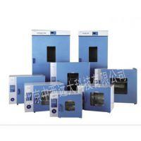 中西dyp 电热鼓风干燥箱 型号:DHG-9055A库号:M361225
