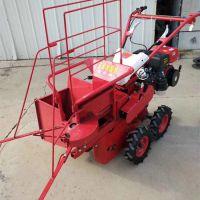 苞米地专用收割机 汽油机带玉米机 农业机械