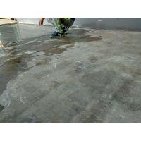 承接惠州市+博罗+惠东厂房水泥地起灰处理+水泥地硬化施工