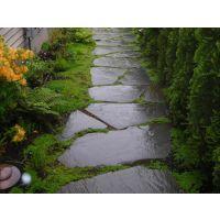 青石板碎拼批发 绿化专用石 乱拼石 文化石