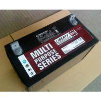 LIBERTY大力神蓄电池C&D12-100铅酸免维护12V100AH现货