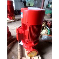 立式消防喷淋泵XBD11/39.7-100L-HY 室外消火栓泵XBD10/37.2-100L 铸铁