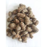 陶粒混凝土 水处理滤料 杭州陶粒沙