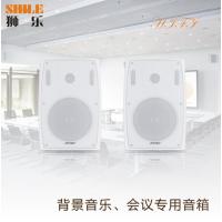 6.5英寸壁挂式会议专业音响BX102室内家用优质PPS塑胶高保真HIFI音响