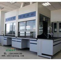 山东潍坊实验室通风柜 桌上型通风柜 PP通风橱生产厂家