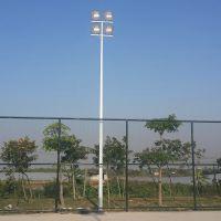 湛江哪里有带梯子的灯柱 定做篮球场照明灯杆 攀爬式的灯杆图片
