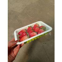金超JCFH-4草莓封盒包装机蓝莓气调保鲜包装机