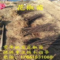 http://himg.china.cn/1/4_174_236404_800_800.jpg