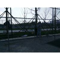 供应球场围网 边框护栏网 厂区园林围网