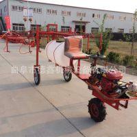 自走式柴油动力三轮车打药机 6米宽幅小麦杀虫打药机 工厂直销
