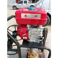 手推式拉管打药机 喷洒均匀 番茄汽油打药机