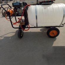 海南手推汽油打药机 园林汽油喷雾器批发 农药喷雾器