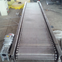 强盛输送机制作商供应网带输送机 不锈钢直行网带输送流水线 欢迎定制