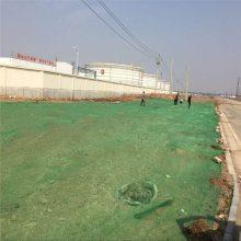 煤场盖煤网 盖土网 扁丝防尘网