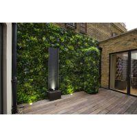 室内植物墙的作用及实际应用