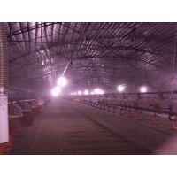 重庆 养殖场喷雾降温消毒设备QXY-2580 -成都乾祥宇环保
