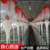 养猪料线设计安装规划厂家 提高母猪发情率自动料线