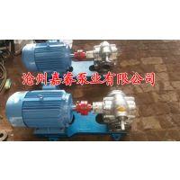 嘉睿供应KCB55不锈钢齿轮油泵 食品泵 保温泵