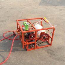 供应手推式大容量高射程园林农业打药机喷雾器