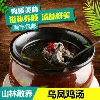 广州天农优品-正宗清远鸡价格行情走势
