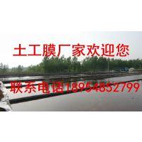 http://himg.china.cn/1/4_17_1059073_800_450.jpg