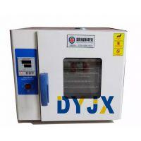 精密烘箱高温箱 鼎耀烤箱电子产品专用恒温箱 高精度出口工业烤箱DYY-255A