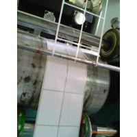 供新塘卷筒不打印不干胶 新塘卷筒不干胶贴纸 新塘空白卷筒不干胶