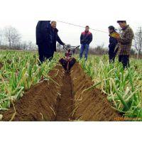 田园管理机各种地形作业 原地自由调头农用管理机