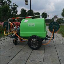 精品直销玉米地专用杀虫打药车农用汽油推车式喷雾器地面喷洒机