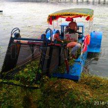 外形美观结实耐用的水上割草船 清漂船厂家