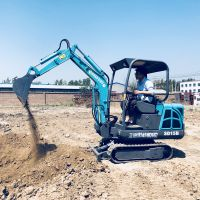 广西福建四川等地广泛应用的微型挖掘机 适用于土地平整的农用山鼎小挖机