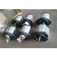 意大利Marzocchi马祖奇齿轮泵ALP2-D-13 马祖奇GHP2A-D-25-FG齿轮泵