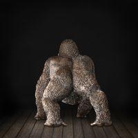 厂家直销 玻璃钢大猩猩FRP雕塑 商场活动影视动漫展示景观小品