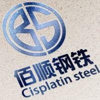 宁波佰顺钢铁科技有限公司