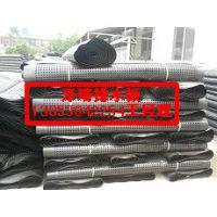 安徽排水板厂家供应——全城