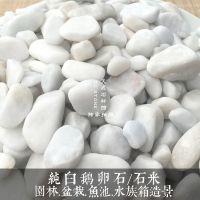 鹅卵石雨花石纯白石米机制白鹅卵石园林绿化带铺盖石白色石子装饰