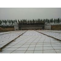 供应广元人工造浪设备、海啸池造价、造浪设备供应厂家