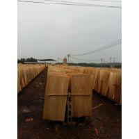 广西鲁安长期生产各种规格的优质桉木单板