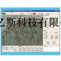 POT-066微循环观察系统安装流程使用方法