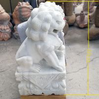 石雕石狮子汉白玉中式传统镇宅辟邪石狮子一对家用招财狮子曲阳万洋雕刻厂家现货加定做
