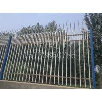 【镀锌管护栏】_安平镀锌管护栏_衡水镀锌管护栏