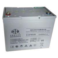 江苏双登蓄电池6-GFM-65/12V65AH价格及型号