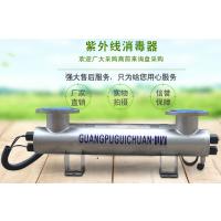 广西梧州生活用水泳池水处理杀菌消毒器紫外线消毒设备厂家