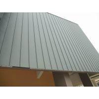 VZ ZINC南美钛锌板25-430