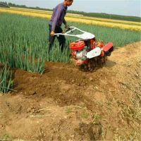 大葱开沟机 农用柴油开沟机 新型旋耕开沟机 除草施肥开沟机