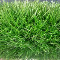 广州时宽SK403HZ曲直仿真人工草皮,绿色环保塑料草坪