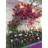 东莞浩晟工艺pe仿真绿植植物花墙婚庆花花艺墙 婚礼上采用什么花做花墙比较好呢?