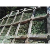 福州景晖生态袋厂家(在线咨询),生态袋,福州园林绿化生态袋