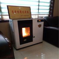 山东厂家直销生物质木屑颗粒采暖炉 家用真火取暖炉