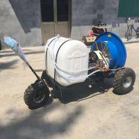 手推式园林喷雾器 启航柴油自走式高杆喷药车 风送式打药机厂家